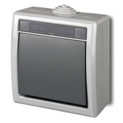 Aufputz einfach Lichtschalter Schalter 10A 230 V IP55 Farbe grau AQUANT,Elektro-Plast,1201-10, 5901130487691