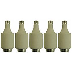 5 x Schmelzsicherung Sicherungeinsätze DII gG 25 A Niederspannungssicherung