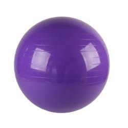 Gymnastikball Ø 75 cm Fitnessball Sitzball Sportball Pilates Sportball Yogaball