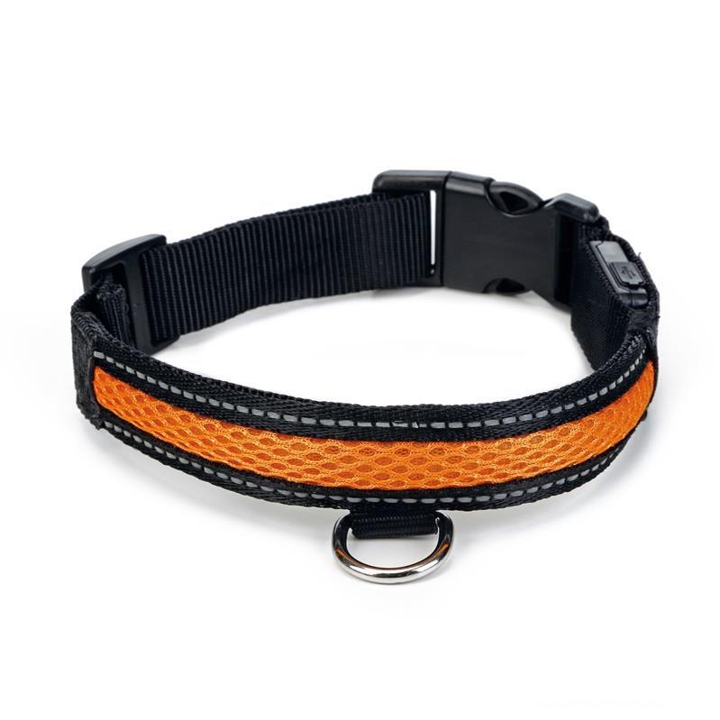 Hunde Halsband Sicherheitshalsband LED Leuchthalsband mit USB Anschluss,Beeztees,000051341564, 8712695147756